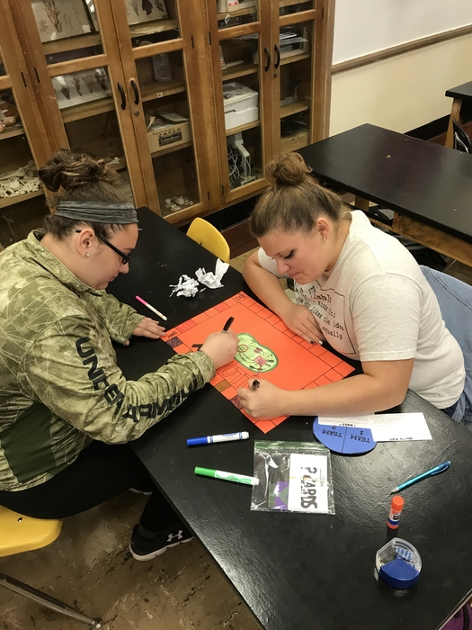 Biology students creating a board game to prepare for a photosynthesis test.
